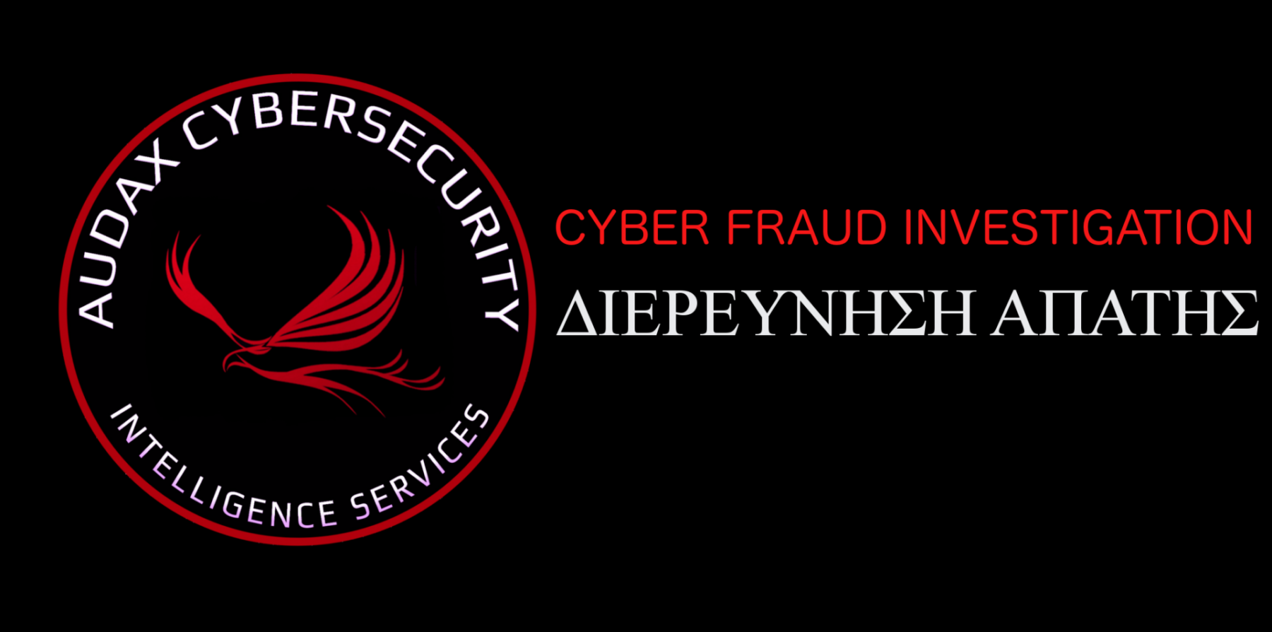 Cyber_Fraud_Investigation-1920x1371